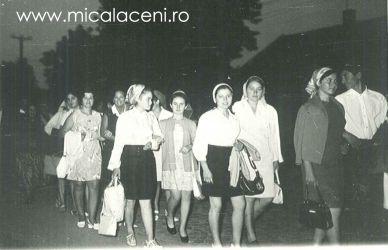 alai de nunta in Micalaca