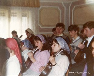 fractie din orchestra